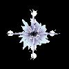 CatOfDeadMoon's avatar