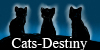Cats-Destiny