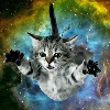 catsareawesome2233's avatar