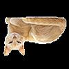 catscatscatsatsc's avatar