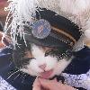 catshogun's avatar