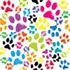 CatsLoveForever's avatar