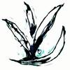 ccufcc's avatar