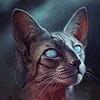 Celestia25's avatar