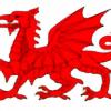 CelfwrDderwydd's avatar