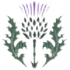 CelticIndependence's avatar