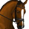 CelticThunderStables's avatar