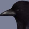 ceriumofspace's avatar