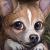 Cerrenity's avatar