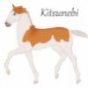 Cerulean-Sky-Stables's avatar