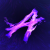 cfiredog's avatar