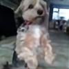 ChakotayWood's avatar