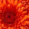 Channie-Britz's avatar