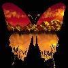 Chantallou71's avatar