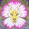 Char-Boo's avatar