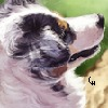 CharlySombreroWearer's avatar