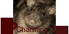 CharmingRats's avatar