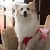 chepau's avatar