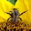 Cherchinski's avatar