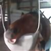 ChibiOro's avatar
