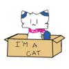 Chiimaki's avatar