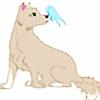 ChinataX's avatar
