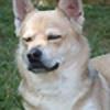 ChizKin's avatar