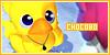 Chocobo--Fans
