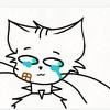 choococatt's avatar