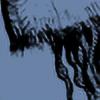 chopper481's avatar