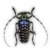 chp's avatar