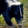 ChromaSkunk's avatar