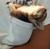 chubbybunny414's avatar