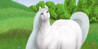 ChubbyFerals's avatar