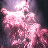 CillySketch's avatar