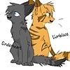 Cinderheart245's avatar