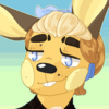 CinematicEcho's avatar