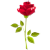 cip33's avatar