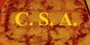 CircleSquareAlliance's avatar