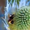 ClaraDragonfly's avatar