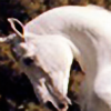clareness's avatar