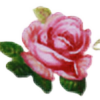 CleoFD's avatar