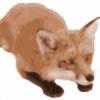 clippy-cat's avatar
