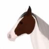 Clover-Park's avatar
