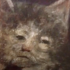 CloverDragon33's avatar