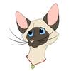 CMCrusoe's avatar