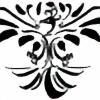 CNVas's avatar
