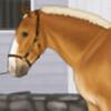 cobra-farms's avatar