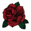 cobrasnakedits's avatar