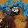 Coelhao95's avatar